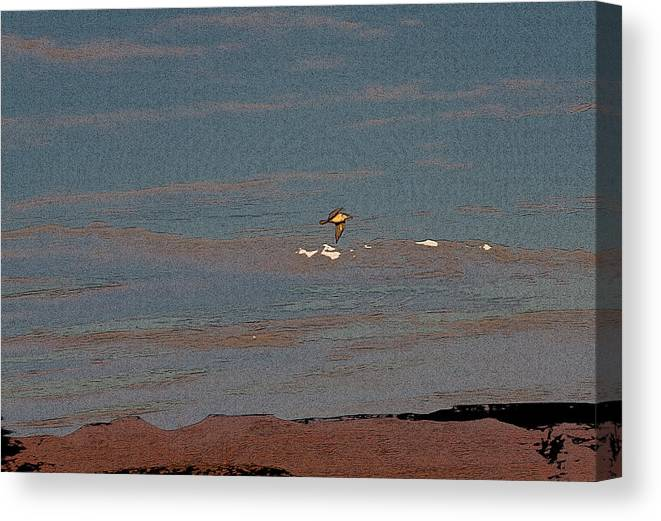 Sea Gull Canvas Print featuring the digital art Lone Gull by Gilbert Artiaga