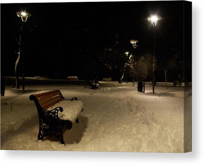 Winter Canvas Print featuring the photograph Waiting by Amalia Suruceanu
