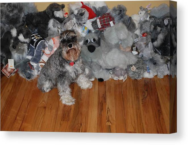 Dogs Canvas Print featuring the photograph Stuffed Animals by Rob Hans