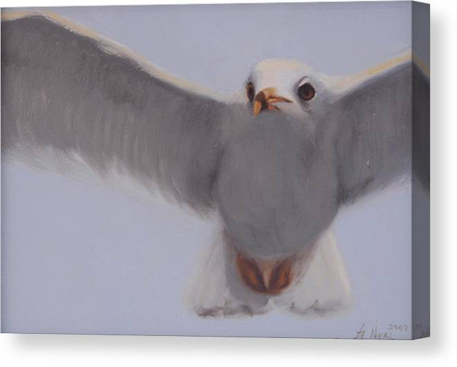 Painting Canvas Print featuring the painting Graceful by Greg Neal