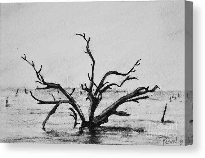 Dead Trees Canvas Print featuring the drawing Lone Tree by Regan J Smith