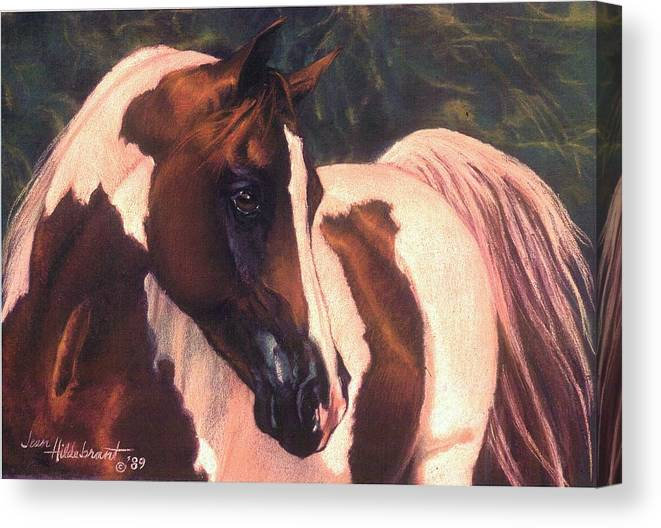 Horse Canvas Print featuring the pastel Paint by Jean Hildebrant