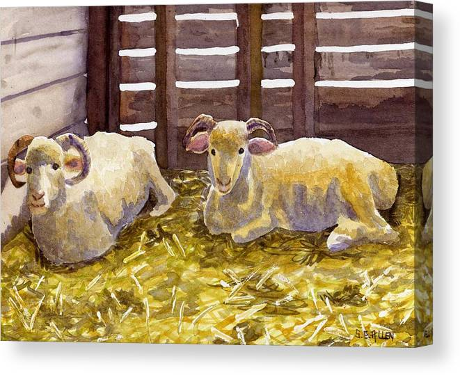 Sheep Canvas Print featuring the painting Pen Pals by Sharon E Allen
