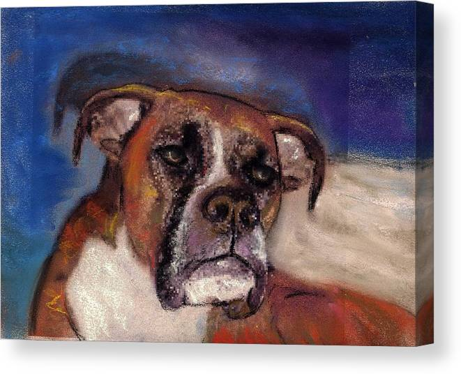 Pastel Pet Portraits Canvas Print featuring the painting Pet Portraits by Darla Joy Johnson
