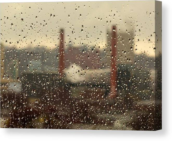 Rain Canvas Print featuring the photograph Raindrops by Lisa Kane