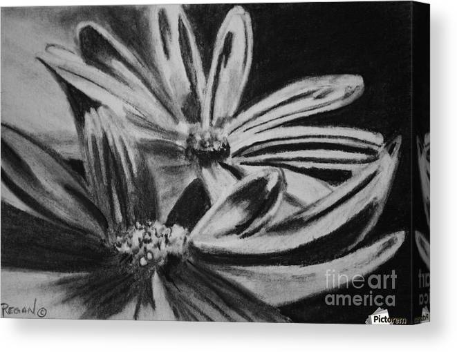 Flowers Canvas Print featuring the drawing Two Flowers by Regan J Smith