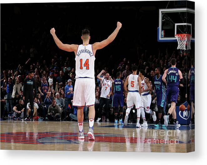 Guillermo Hernangómez Geuer Canvas Print featuring the photograph Charlotte Hornets V New York Knicks by Nathaniel S. Butler