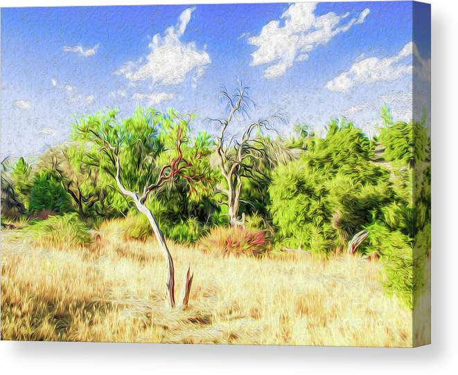 Outdoors Canvas Print featuring the digital art A Place of Serenity III by Kenneth Montgomery