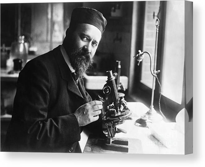 Microscope Canvas Print featuring the photograph Albert Calmette Working With Microscope by Bettmann