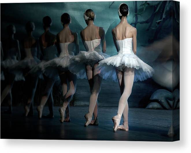 Expertise Canvas Print featuring the photograph Ballerinas by Tunart