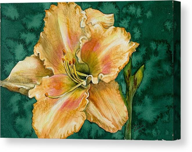 Canvas Print featuring the painting Daylily O by Diane Ziemski