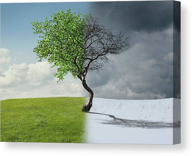 Snow Canvas Print featuring the photograph Digital Illustration Of Half Winter by Chris Clor