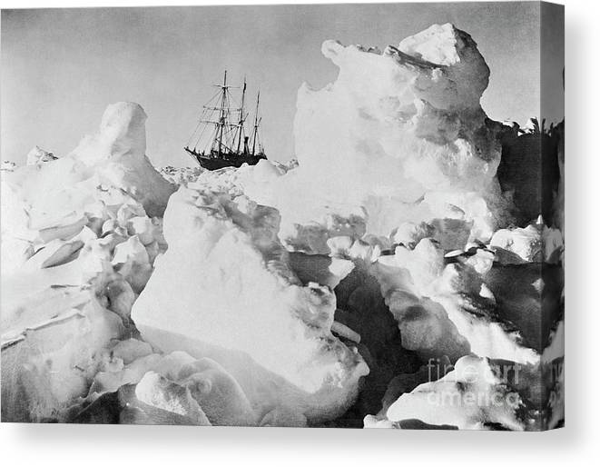 1914-17 Imperial Trans-antarctic Expedition Canvas Print featuring the photograph Ernest Shackletons Ship Endurance by Bettmann