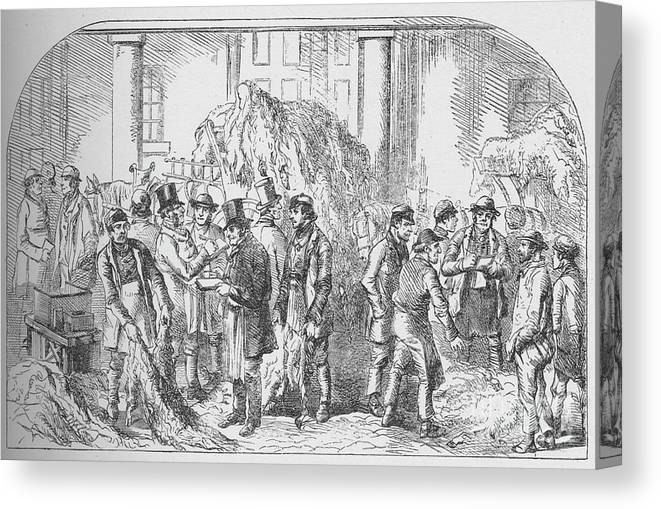 Trading Canvas Print featuring the drawing The Skin Market, Bermondsey by Print Collector