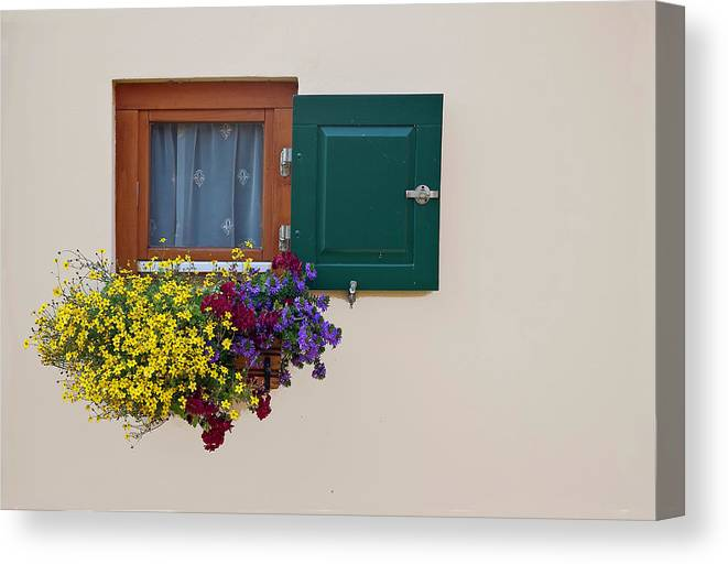 Outdoors Canvas Print featuring the photograph Window With Flowers by Enzo D.