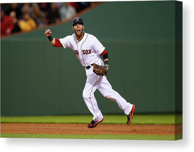 American League Baseball Canvas Print featuring the photograph Dustin Pedroia by Jared Wickerham