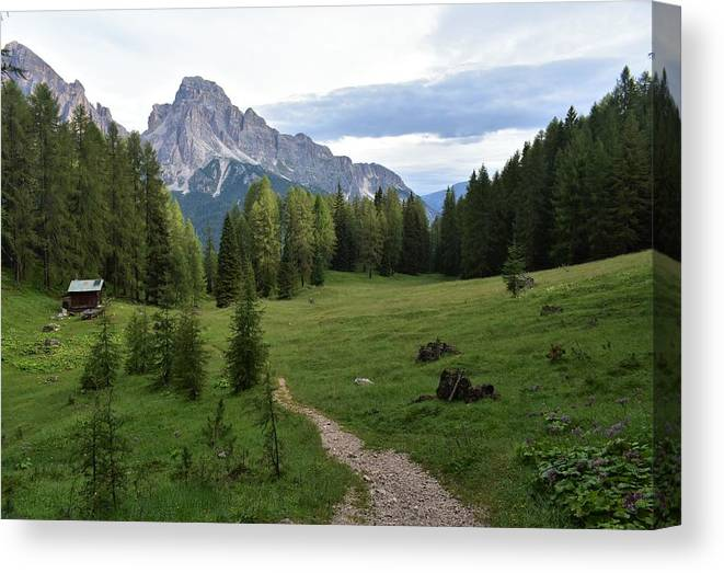 Dolomites Canvas Print featuring the photograph Meadow in the dolomites by Luca Lautenschlaeger