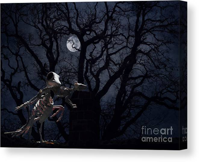 Raven Canvas Print featuring the photograph Raven and Rat Skeleton in Moonlight - Halloween by Colleen Cornelius