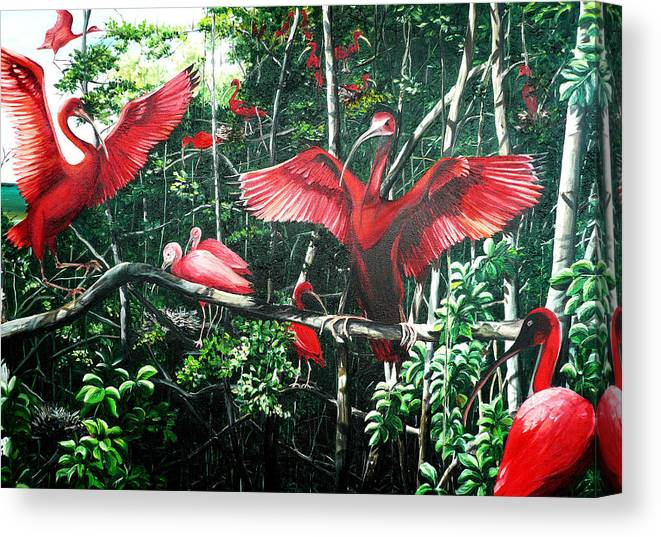 Caribbean Painting Scarlet Ibis Painting Bird Painting Coming Home To Roost Painting The Caroni Swamp In Trinidad And Tobago Greeting Card Painting Painting Tropical Painting Canvas Print featuring the painting Scarlet Ibis by Karin Dawn Kelshall- Best