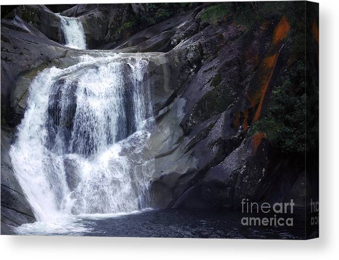 Tropical Canvas Print featuring the photograph Top End Flow - Josephine Falls by Kerryn Madsen- Pietsch