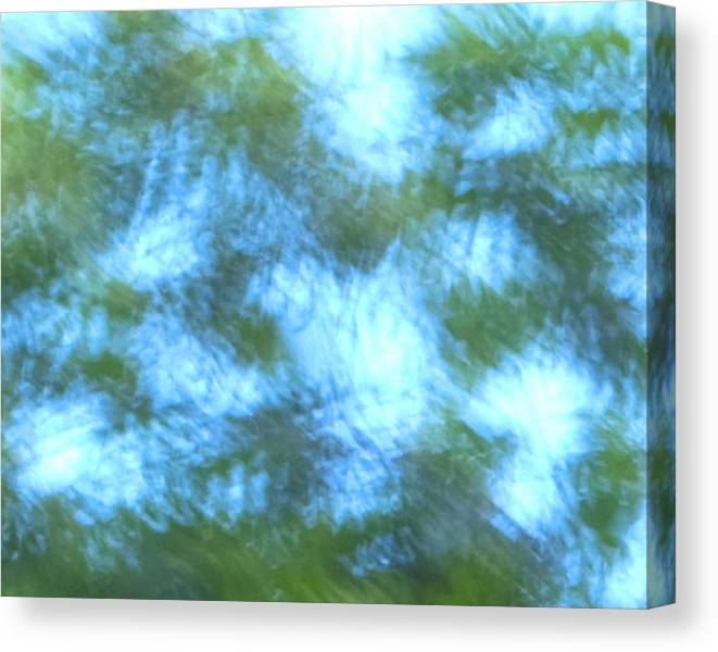 Natanson Canvas Print featuring the mixed media Blowing In The Wind by Steven Natanson