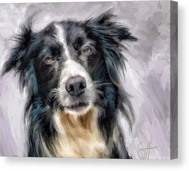 Border Collie Canvas Print featuring the digital art Top Dog by Scott Waters