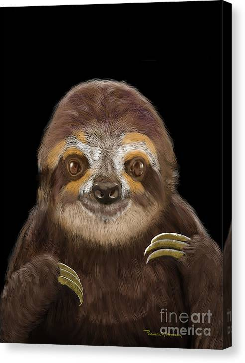 Limited Time Promotion: Happy Three Toe Sloth Stretched Canvas Print