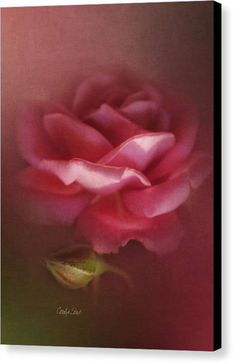 Floral Roses Nature Digital Canvas Print featuring the painting My Ordinary Rose by Carolyn Staut
