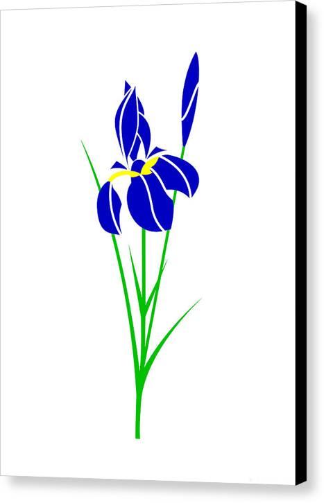 Iris Canvas Print featuring the digital art Iris by Asbjorn Lonvig