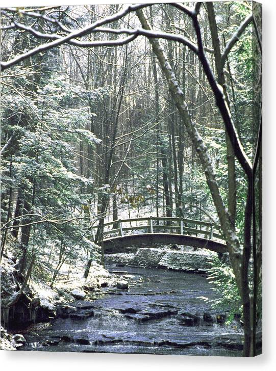 Snow Canvas Print featuring the photograph 092508-1 by Mike Davis