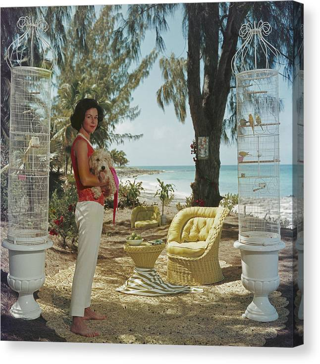 Pets Canvas Print featuring the photograph Gloria Schiff by Slim Aarons