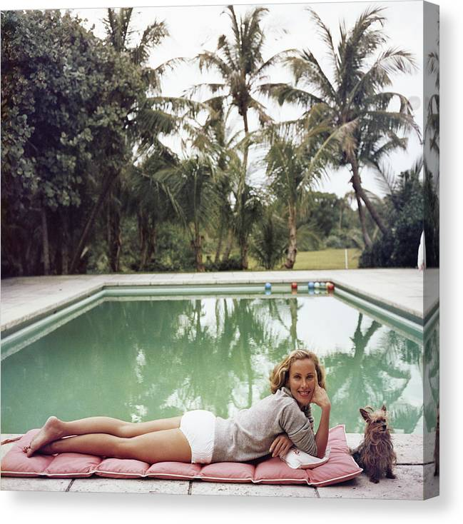 Pets Canvas Print featuring the photograph Having A Topping Time by Slim Aarons
