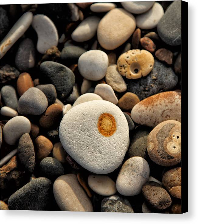 Wall Art Canvas Print featuring the photograph Egg Pebble by Russ Dixon