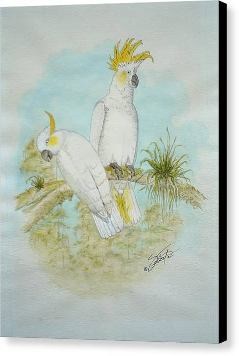 Birds Canvas Print featuring the painting Cockatoos by Dennis Vebert