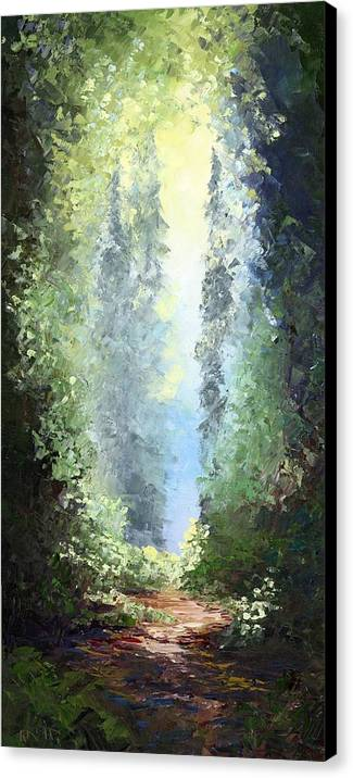Light on Sperry Chalet Trail by Raette Meredith