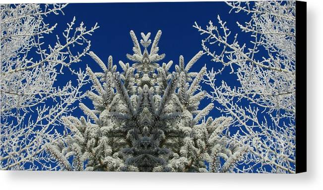 Frost Canvas Print featuring the photograph Frosty by Janice Westerberg