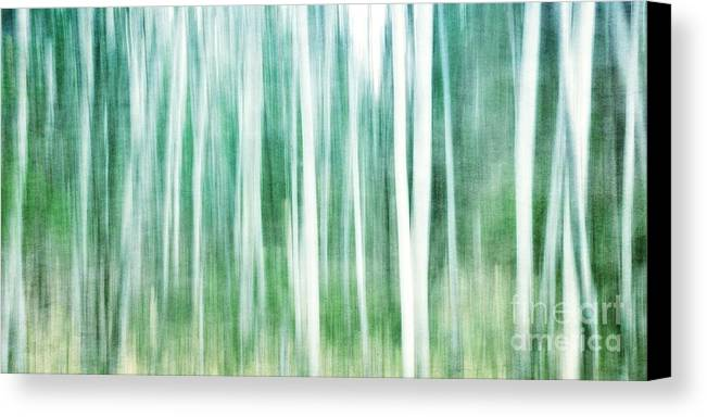 Abstract Canvas Print featuring the photograph A Matter Of Blues by Priska Wettstein