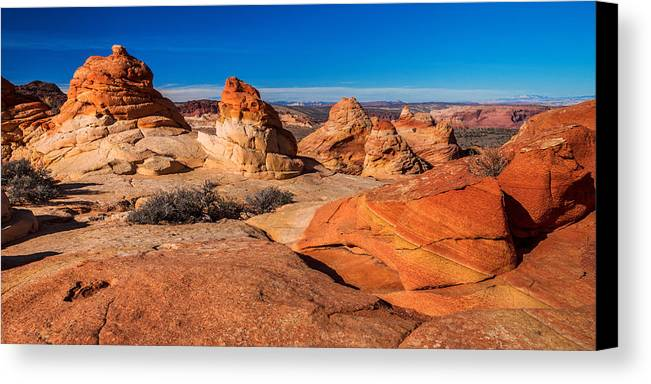 Arizona Canvas Print featuring the photograph Coyote Lines by Chad Dutson