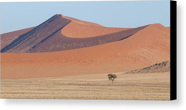 Namib Canvas Print featuring the photograph Namib Lanscape by Marco Bottigelli