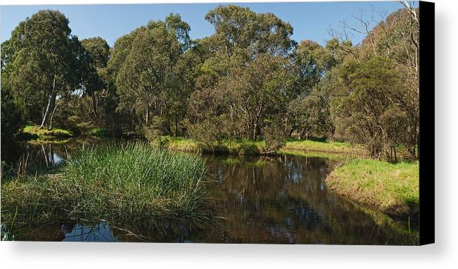 Australia Canvas Print featuring the photograph Pond In Park by View Factor Images