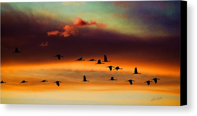 Bill Kesler Photography Canvas Print featuring the photograph Sandhill Cranes Take The Sunset Flight by Bill Kesler