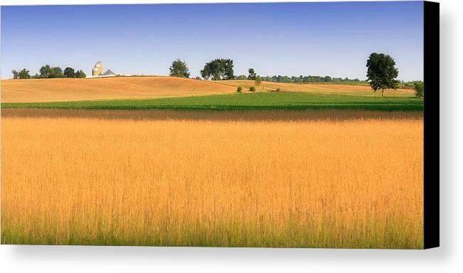 Landscape Canvas Print featuring the photograph Summer Fields by Jamie McCann