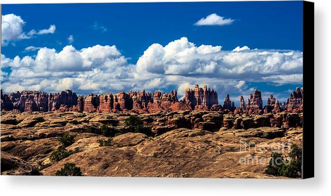 Panoramic Canvas Print featuring the photograph The Needles by Robert Bales
