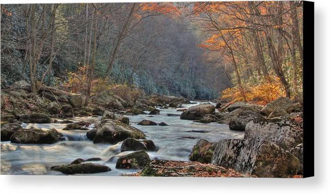 Landscape Canvas Print featuring the photograph Fall On Savage River by Neal Blizzard