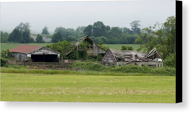 Barn Canvas Print featuring the photograph Old Smith River Dairy by Betty Depee