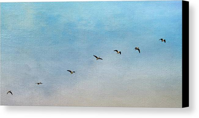 Geese Canvas Print featuring the photograph Seven by Rebecca Cozart