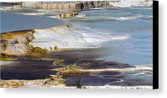 Chad Davis Canvas Print featuring the photograph Plateau Of Colors by Chad Davis