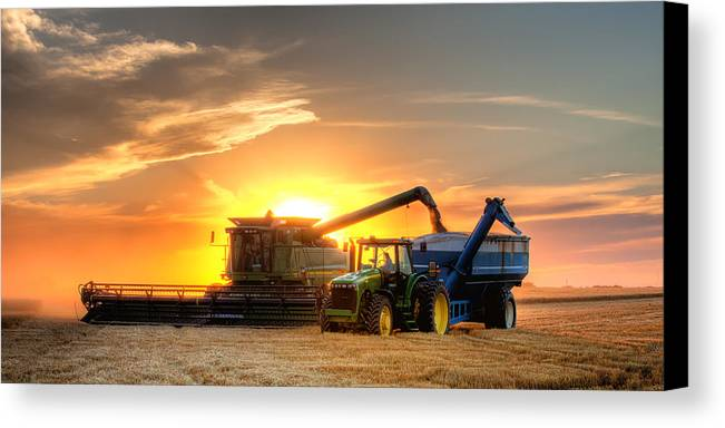 Landscape Canvas Print featuring the photograph The Harvest by Thomas Zimmerman