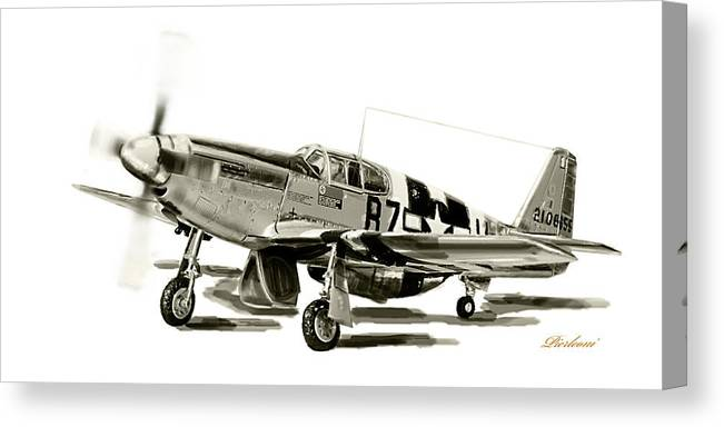 American P-51 Mustang Canvas Print featuring the photograph Mustang P-51 by Tony Pierleoni