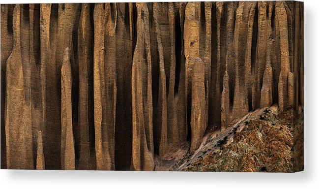 Photography Canvas Print featuring the photograph Clay Organ Pipes Formation In Front by Panoramic Images